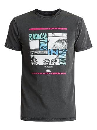 Quiksilver - Camiseta - Hombre - S  Amazon.es  Ropa y accesorios fadc6831272
