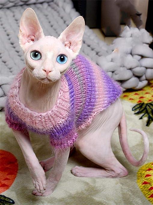 ZHIHAN Suéter Hecho a Mano de Gato sin Pelo Sphinx Ropa de otoño e Invierno L, Rosa púrpura, XS: Amazon.es: Productos para mascotas