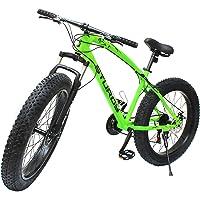 STURDY BIKES Fat Mountain Bike with 26X4 Inch Tyres (Green)