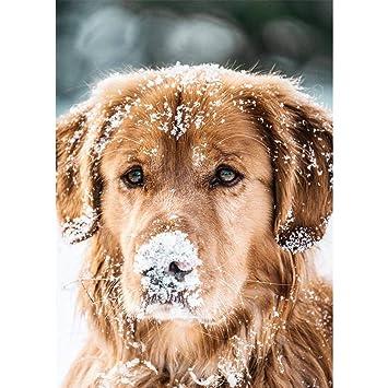 DIY 5D Diamond Painting Dog feilin Diamond Embroidery Rhinestone Painting Cross Stitch Kit Wall Art Decor 5D Diamond Painting by Number Kits Home Decor 30x40cm