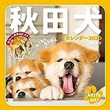 むくむくもふもふ 秋田犬 カレンダー 2020