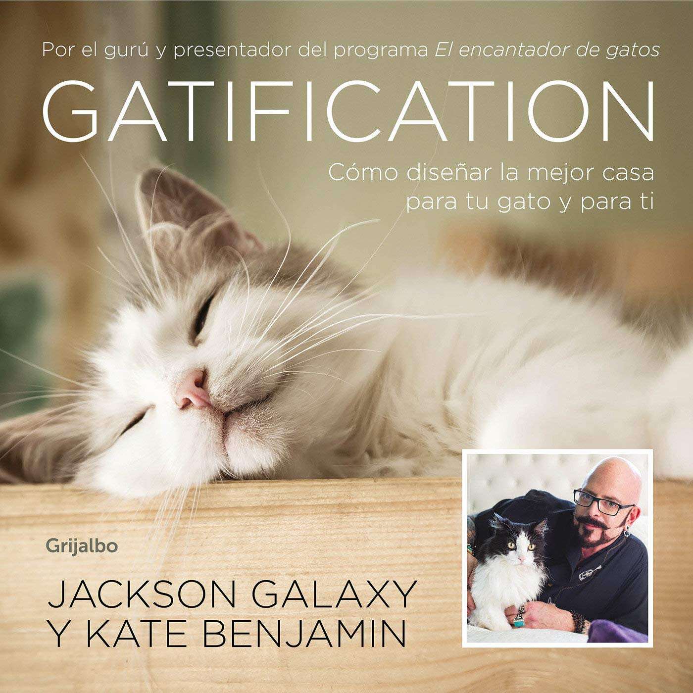 gatification cmo disear la mejor casa para tu gato y para ti catification spanish edition