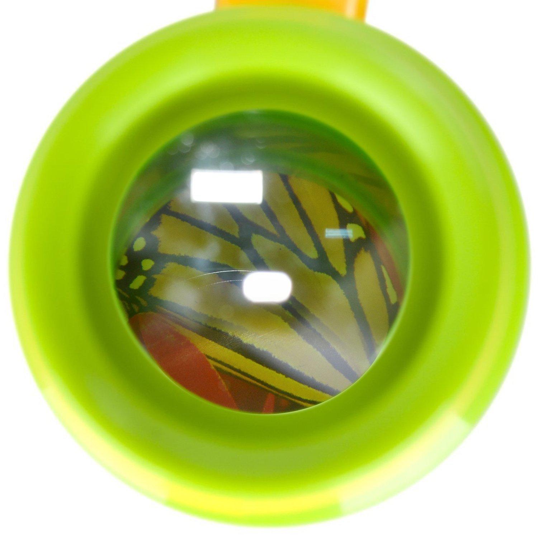amazon com jellydog insect magnifier kids backyard exploration