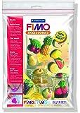 """Staedtler - Fimo Accessoires - Polybag 1 Moule 14 Motifs """"Fruits"""" 5 x 3 cm"""