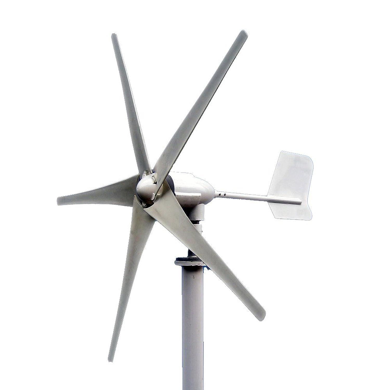 Amazon ALEKO WG450A 450 Watt 24 Volt Residential Wind