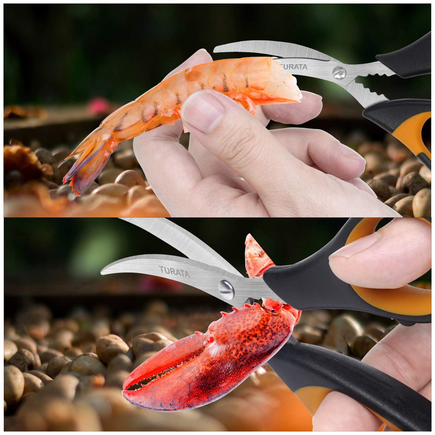TURATA Kitchen Scissors Set Poultry Shears Seafood Lobster Scissors Heavy Duty Crab Scissors Cooking Utility Scissors Culinary Scissors Multifunctional Lefty Shears for Meat and Seafood