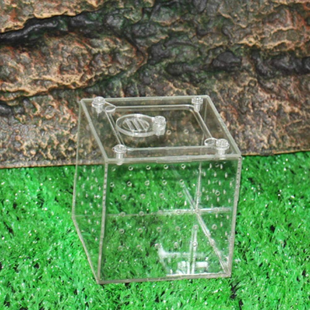 awhao-123 Caja cría Reptiles, Caja de cría de Reptiles Transparente Caja de alimentación de acrílico para Mascotas para criar arañas Scorpions Mantis Display Sturdy