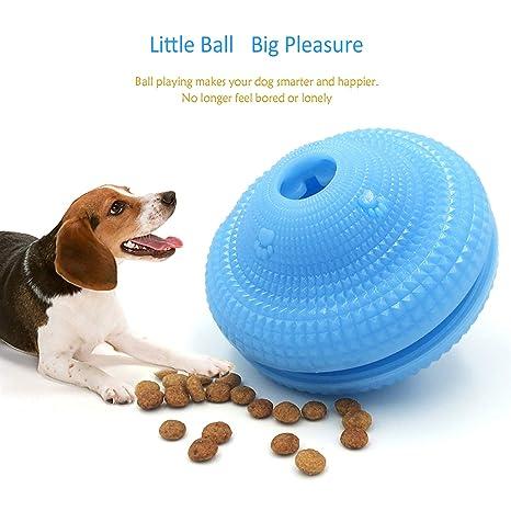 Pelota de juguete para perro Garsum, no tóxica, resistente a los ...