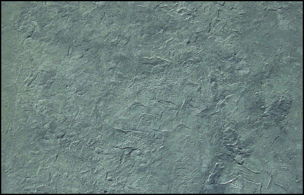 24 BonWay ST302-01 42-223 Romana Slate Seamless Skin