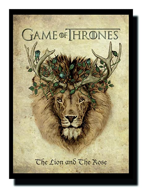 Ravgar Got Game Of Thrones The Lion And The Rose Canvas