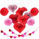 Blulu Valentine's Day Paper Kit Party Decorations, Multicolor Tissue Paper Flowers Bunting Hanging Fan for Party Decorations