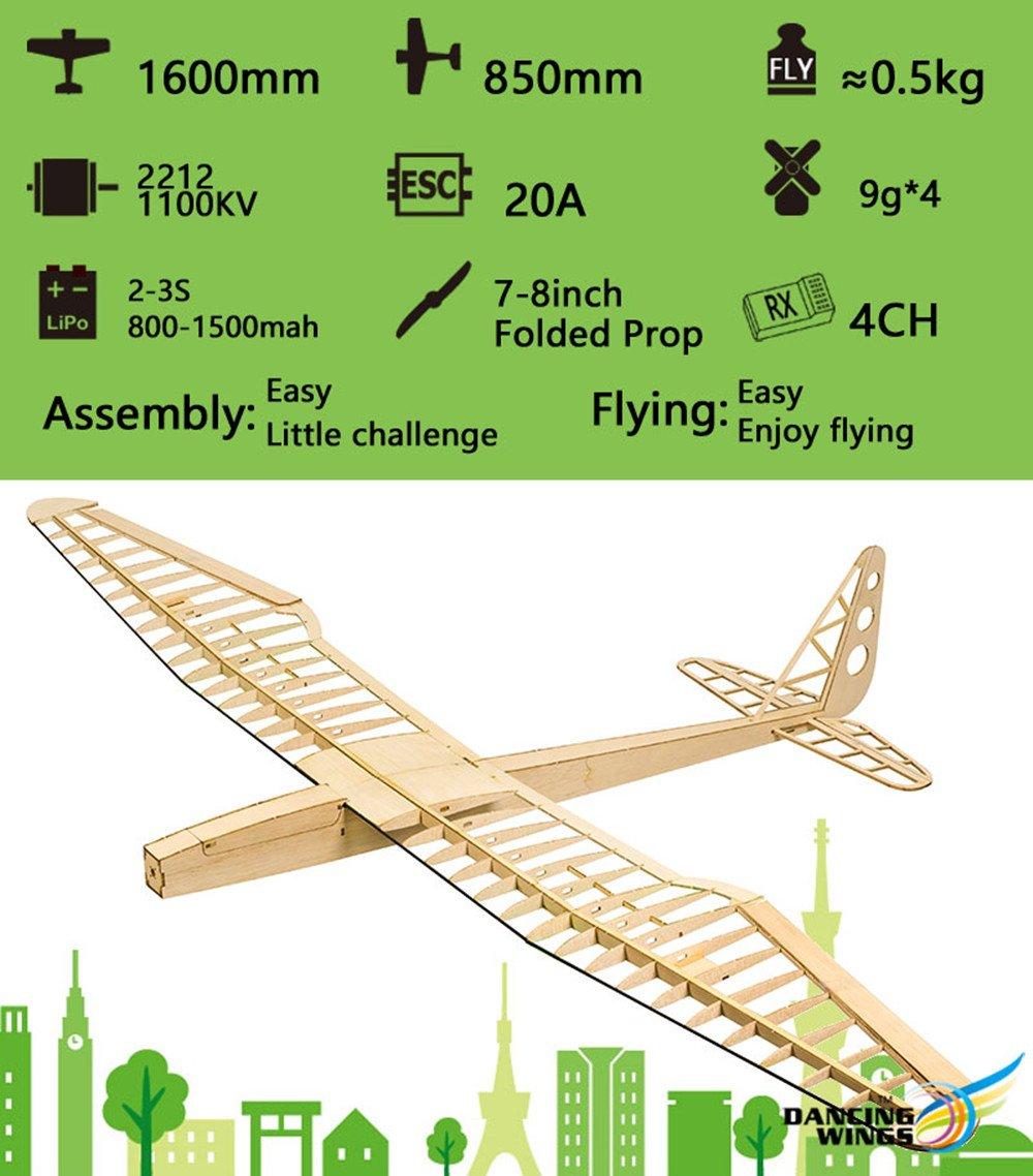 DW Hobby RC Glider Planes, Sunbird Balsa Wood Model Airplane, 1600mm