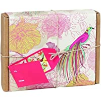 teNues Gift Wrapped Blank Note Cards in Keepsake Box, Birds, 16-ct