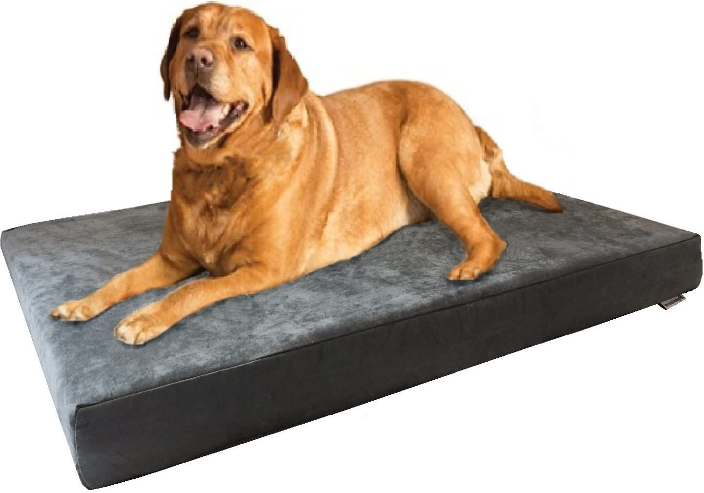 Dogbed4less Jumbo Orthopedic Gel Memory Foam Pet Bed with Waterproof Internal Case 2 Washable Microsuede External Cover for Larger Dog