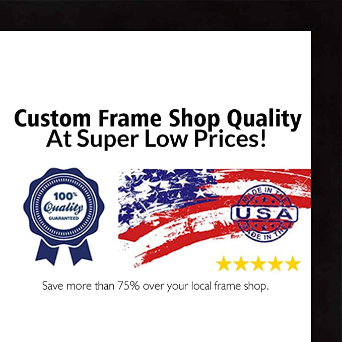 25x34 Modern Black Wood Picture Frame With Acrylic Front and Foam Board Backin