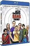 Big Bang Theory Temporada 9