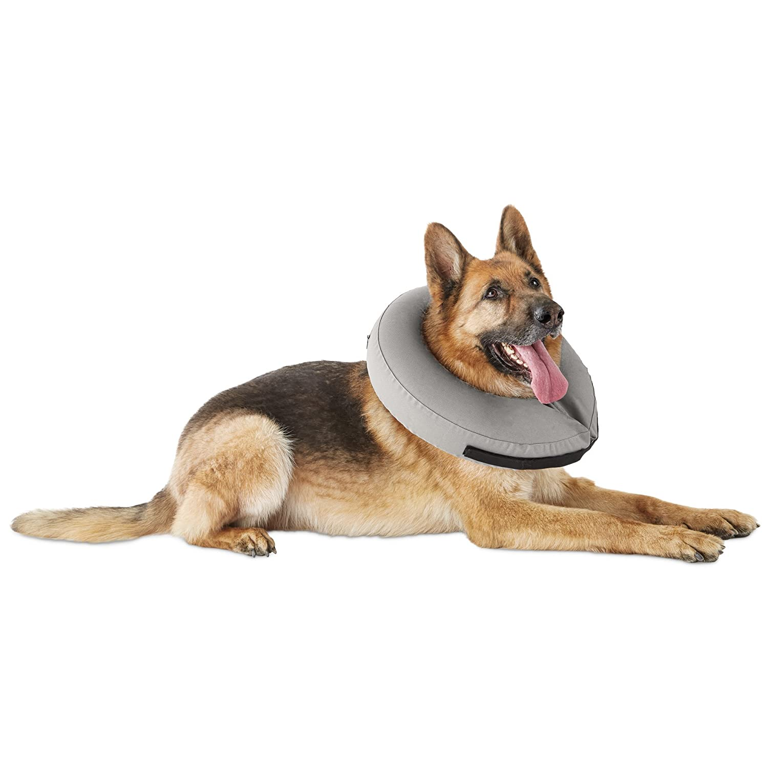 Large X-Large Well & Good Inflatable Collar for Dogs and Cats, Large X-Large, Large X-Large