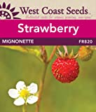 Strawberry Seeds - Mignonette