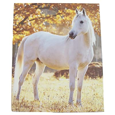 Staples Two Pocket Paper Folder ~ Animal Folder (Peaceful White Stallion): Toys & Games