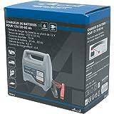 ARCOLL 57315 Chargeur de Batterie 12 V 6 A