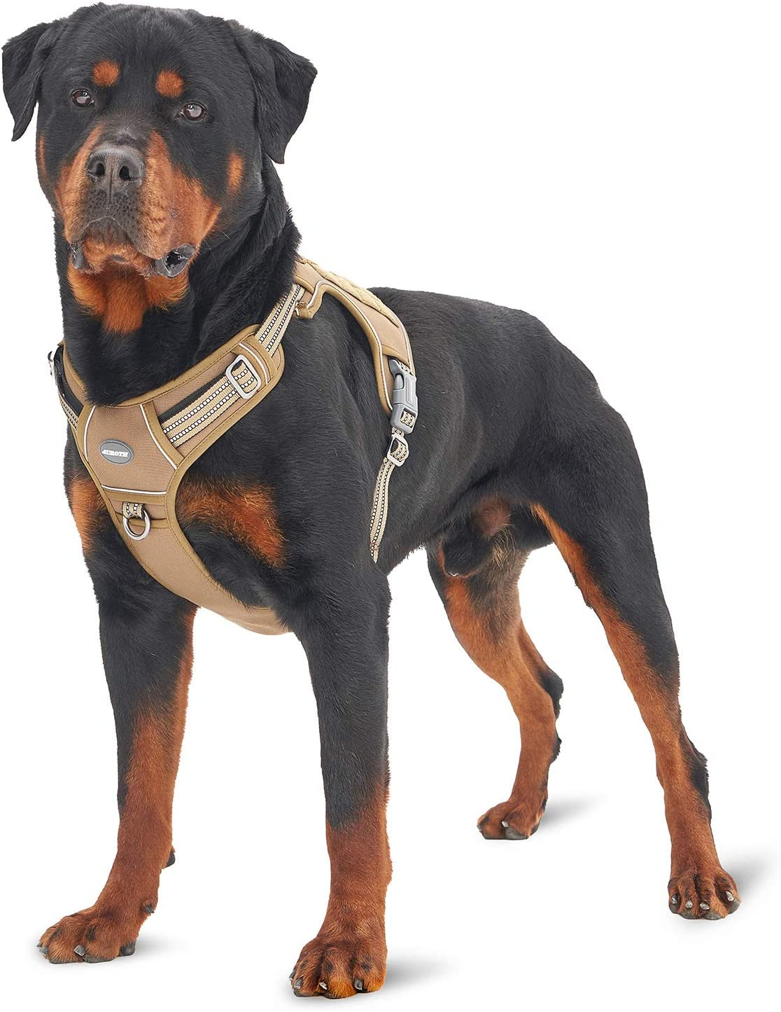 Auroth Tactical Dog Training Harness Review