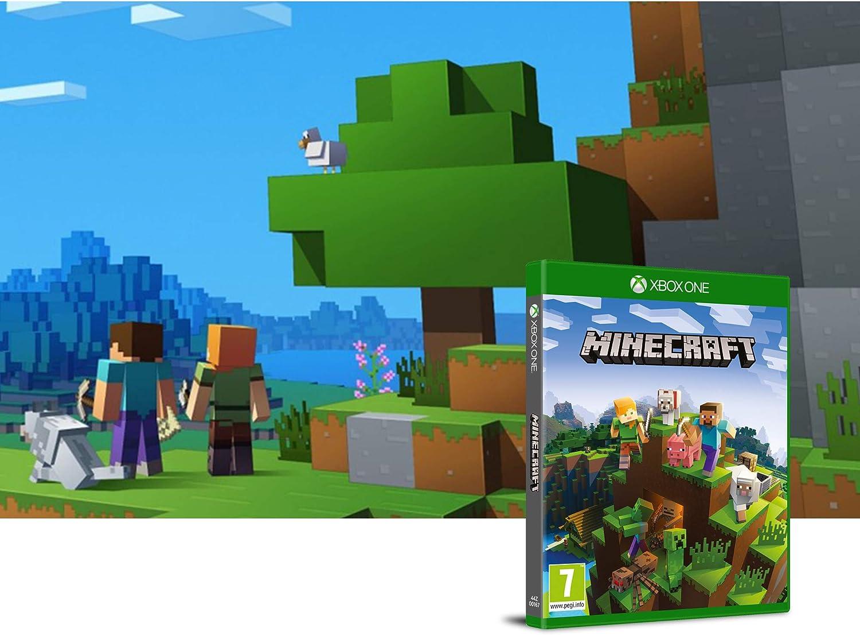 Minecraft Gioco Base - Ltd. Edition: Amazon.es: Videojuegos