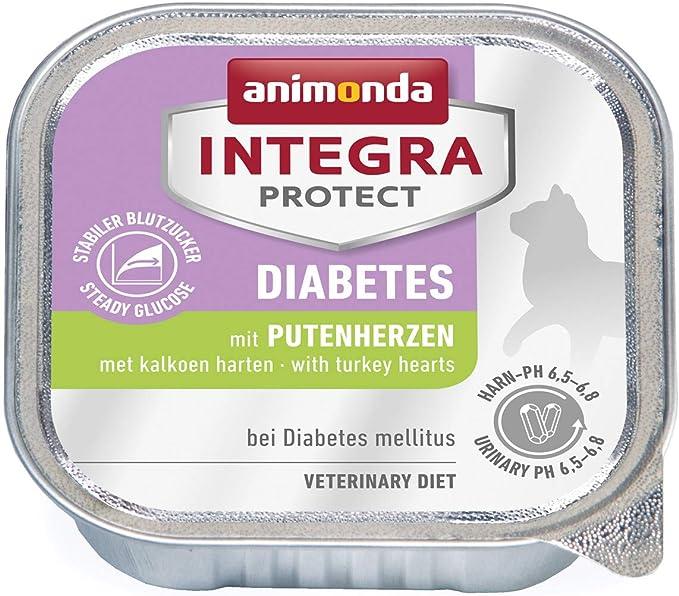 Vor Diabetes empfohlene Diät