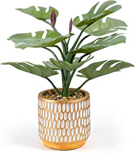 Keleer Artificial Plant in Pot,TropicalMonstera PlantsinElegant CeramicPlanter,Potted Artificial Succulents and Plants for Home Decor and Office Desktop (Wash Green Monstera)