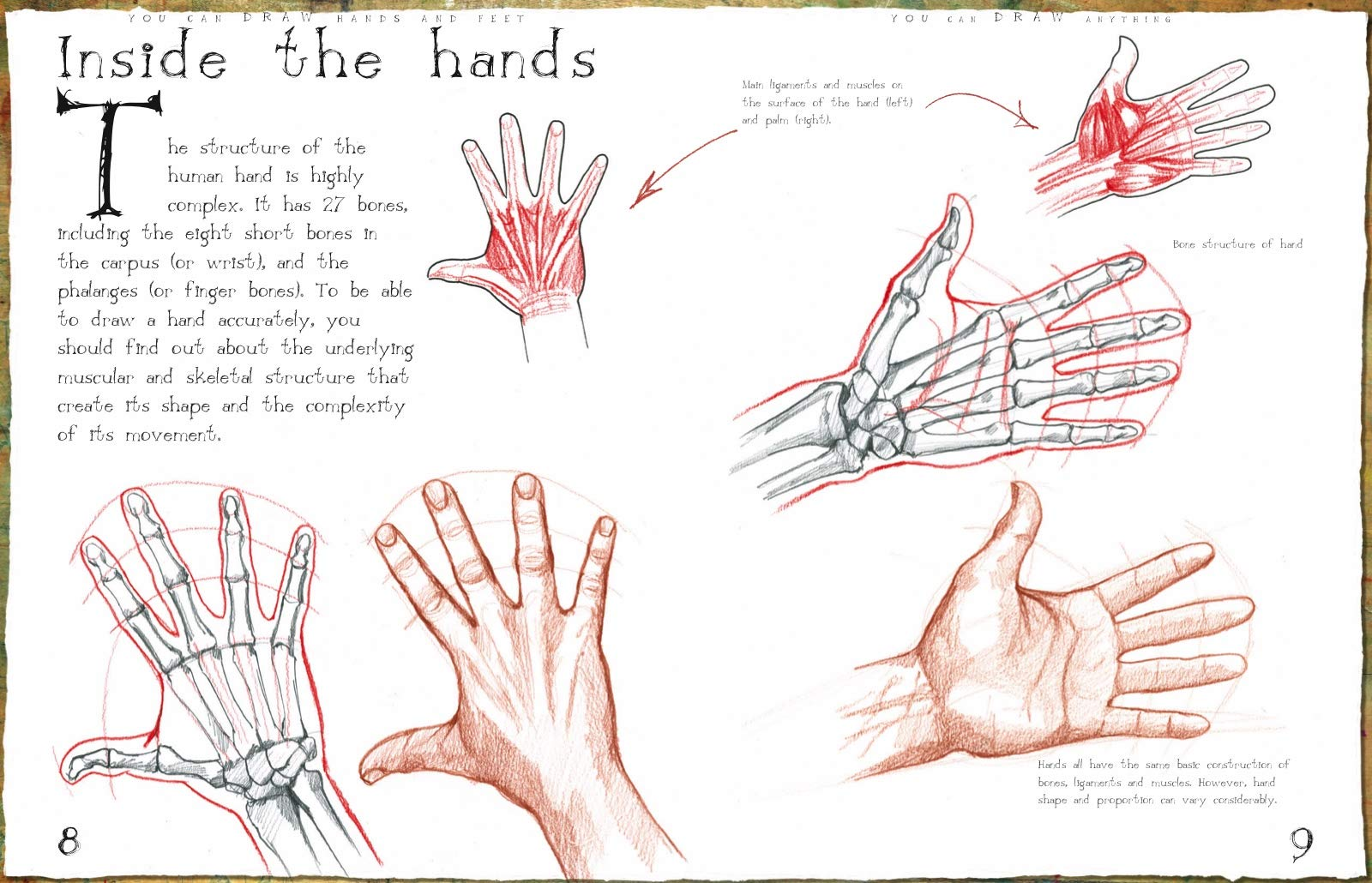 Hands And Feet How To Draw Mark Bergin 9781912904549