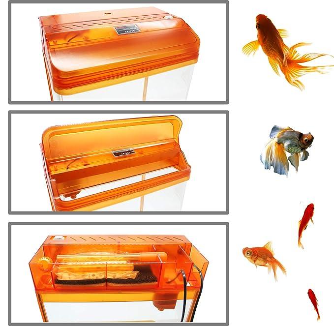 BPS Kit de Acuario con Iluminación LED Bomba Filtro y Accesorios para Pecera Peces (L: 38x26x47 cm, Naranja) BPS-6005NA: Amazon.es: Productos para mascotas