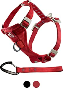 Kurgo Tru-Fit Crash Tested Dog Harness, Enhanced Strength Dog Vest, Dog Safety Harness with Pet Seat Belt Tether for Car, Medium, Red