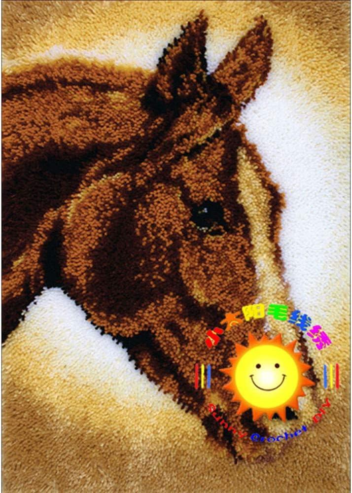 LGWG DIY Teppich Kn/üpfen,Kn/üpfkissen Stickerei Kreuzstich Kissen Teppich Gro/ße Kn/üpfset Erwachsene Zum Selber F/ür Kinder Und Erwachsene Home Dekor//Geschenk,Bunt,52 15in 38cm//20