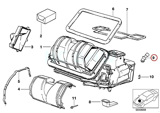 Amazon Com Bmw Genuine Condensation Water Outlet Hose Automotive