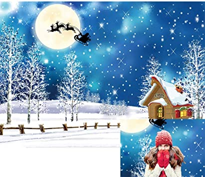 DaShan 8x6ft Polyester Winter Snow Christmas Ice Frozen Backdrop Santa Sleigh Reindeer Winter Wonderland Winter Tree Snow Adventure Photography Background New Year Party Christmas Decor Photo Props