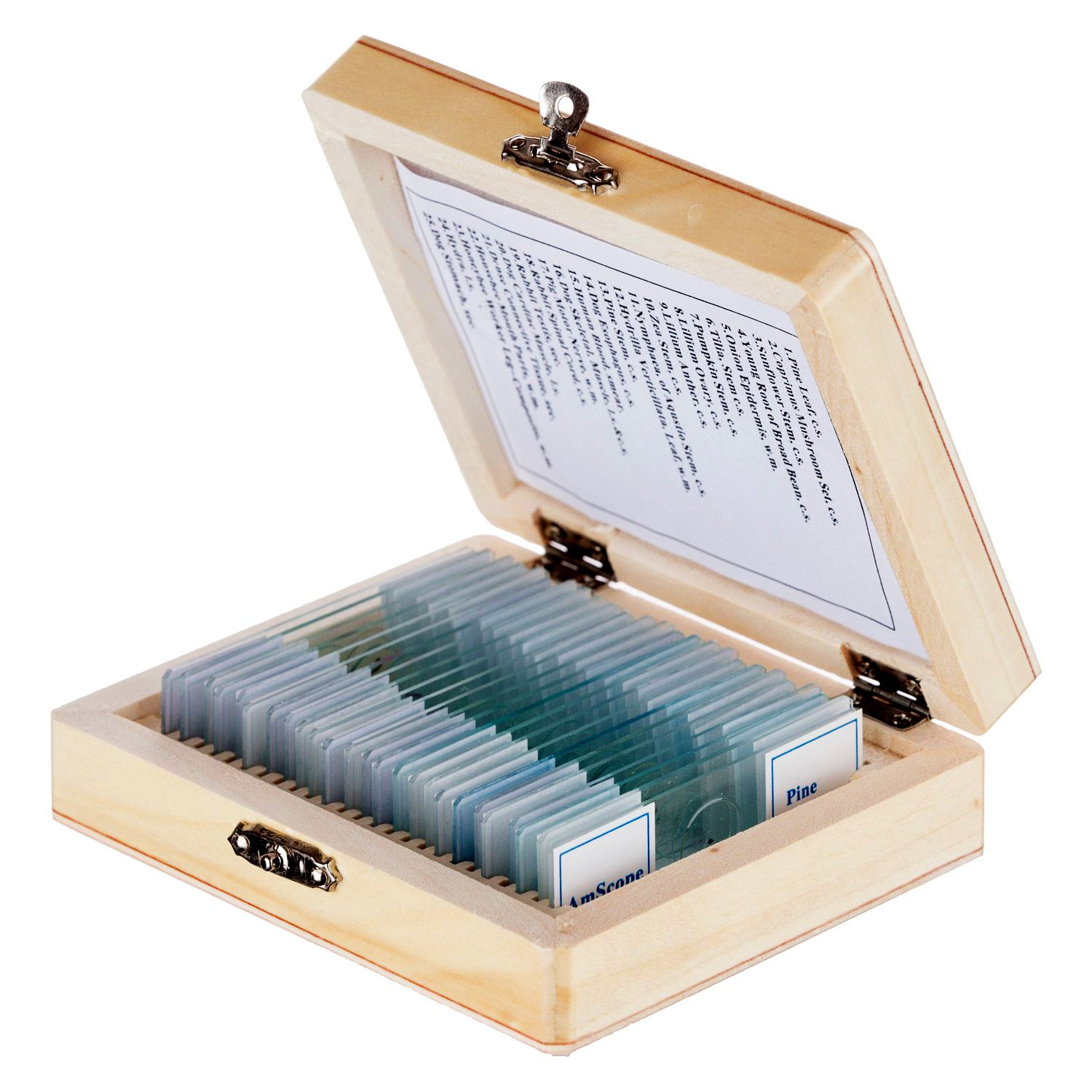 AmScope 25pc Glass Slide Microscope Prepared Slides Assorted Specimens of Plants Insects and Animal Tissues in Wooden Storage Box Case