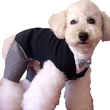 34854aa10bb41 iDog アイドッグ 新郎のタキシードスーツ ブラック S 犬 服