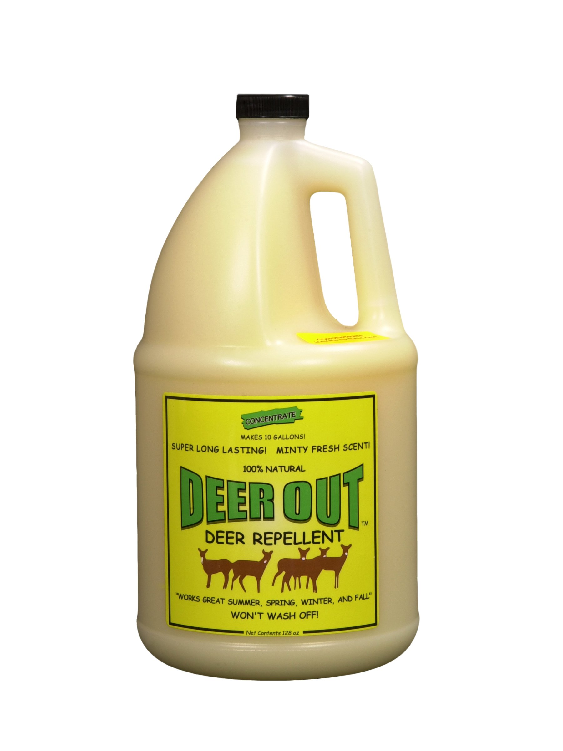 Deer Repellent :Deer Out 1 Gallon Concentrate Makes 10 Gallons by Deer Out