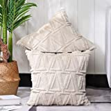 MADIZZ Pack of 2 Soft Plush Short Wool Velvet Decorative Throw Pillow Covers Luxury Style Cushion Case Pillow Shell for Sofa