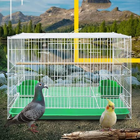 GL-birdcage Jaula de pájaros de Metal para Loros pequeños ...