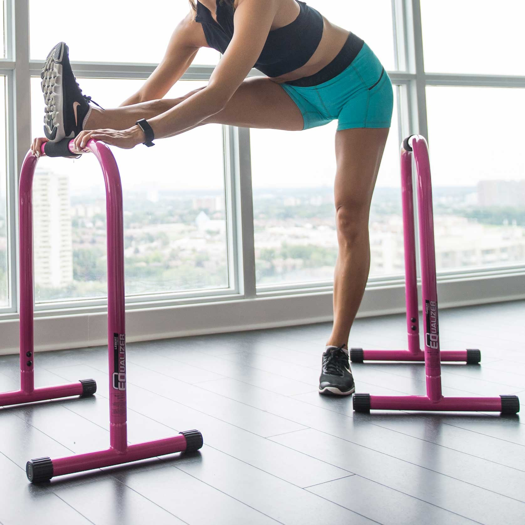 Lebert Fitness Equalizer Bars Total Body Strengthener, Pink by Lebert (Image #2)