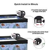 CLBO Automatic Fish Feeder,Auto Fish/Turtle