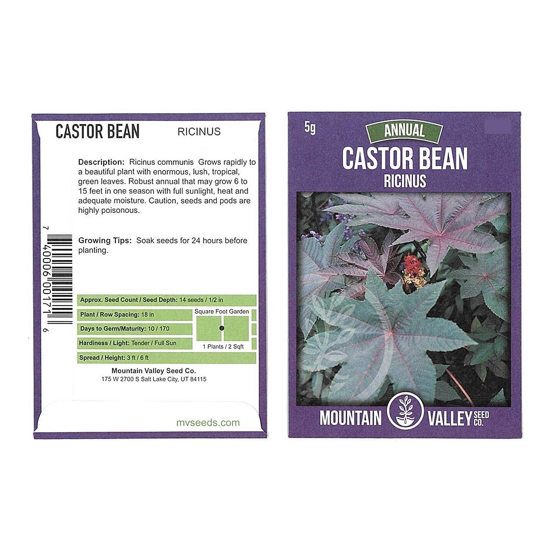 Castor Bean Seeds - 5 Gram Packet - Non-GMO Tropical Ornamental House Plant Seeds - Ricinus communis - Annual