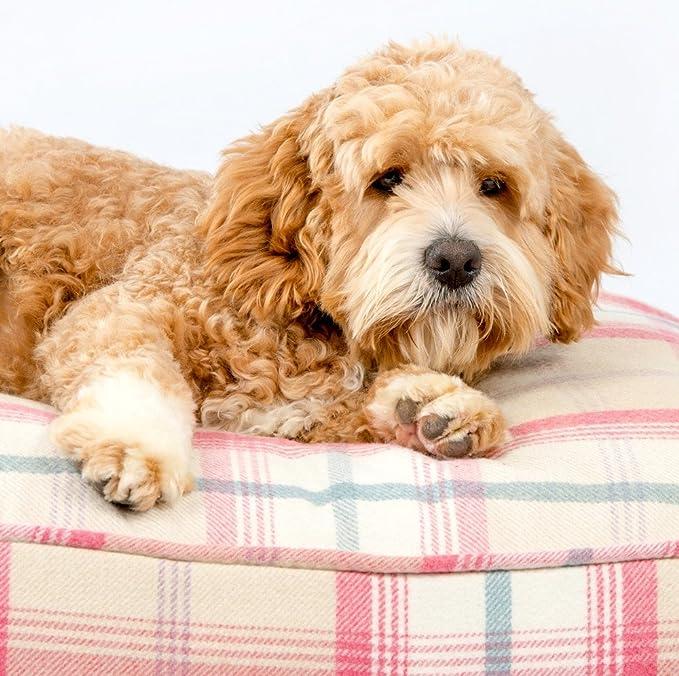 Lords & Labradors Balmoral Tweed perro cojín cama - lujo perro cojín en nuestra hermosa balmoral Tweed: Amazon.es: Productos para mascotas