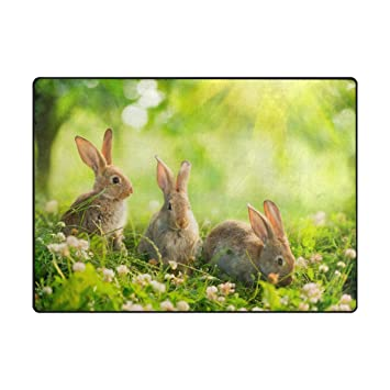 Amazon Com Vantaso Non Slip Nursery Rugs Easter Bunny Rabbits On