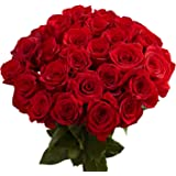 GlobalRose 50 Red Roses- Fresh Long Stem Flowers- Perfect For Your Special Occasion