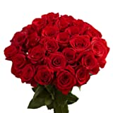 GlobalRose 50 Red Roses - Valentine´s Day Fresh
