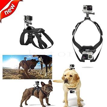 Soporte de perro correa de arnés de pecho para cámara GoPro Hero 4 3 + 3 2 Cámara: Amazon.es: Electrónica