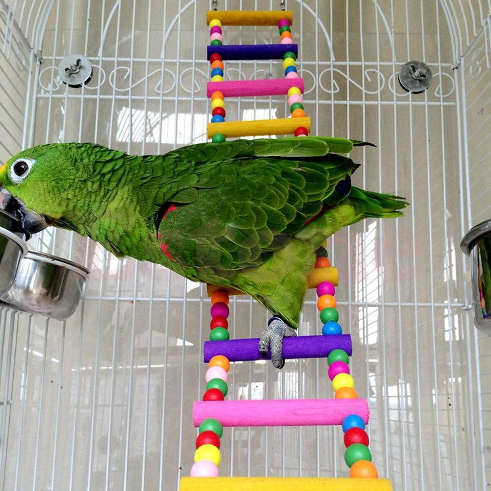 Itemap Pet Bird Swing Wooden Bridge Ladder Climb Parakeets Cockatiels Parakeet Budgie Parrot Toy (5 Steps) (10 steps) by Itemap (Image #7)