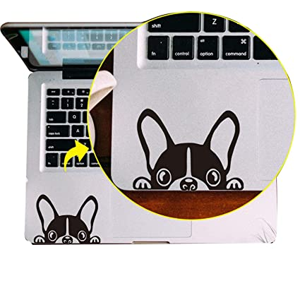Amazon com: Cool Laptop Trackpad Notebook Touchpad Sticker