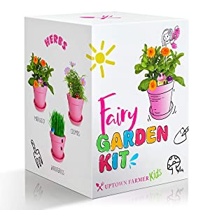 Fairy Garden Décor Kit – Girl Toys Ages 4 5 6 7 8 9 10 – Accessories Including Pots, Peat Moss, Heirloom Non-GMO Seeds, Toy Toadstools, Fairies and Ladybirds – Science STEM Gifts For Kids